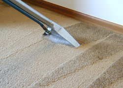 crystal cleaning carpet cleaning3